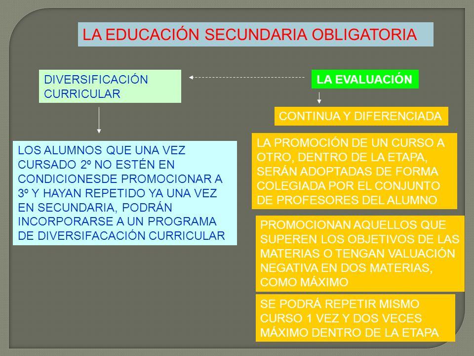 LA EDUCACIÓN SECUNDARIA OBLIGATORIA