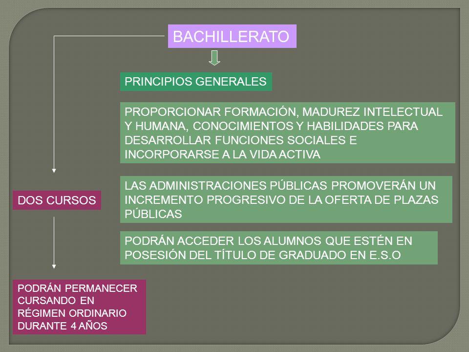 BACHILLERATO PRINCIPIOS GENERALES