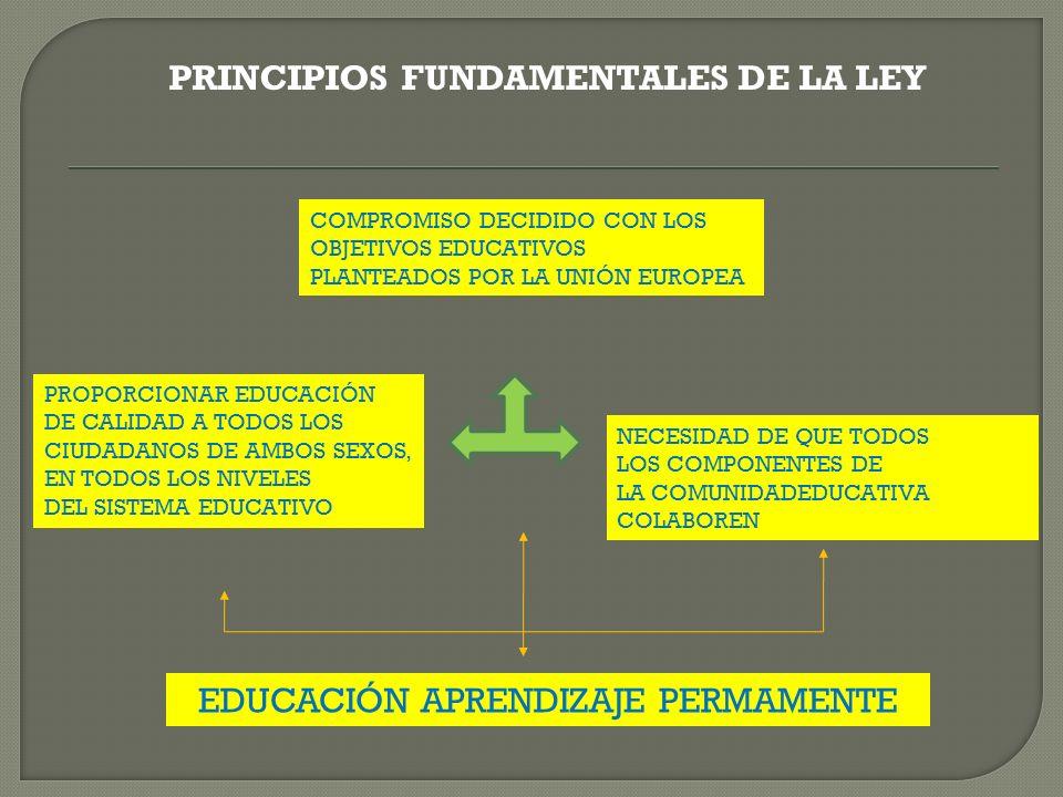 EDUCACIÓN APRENDIZAJE PERMAMENTE