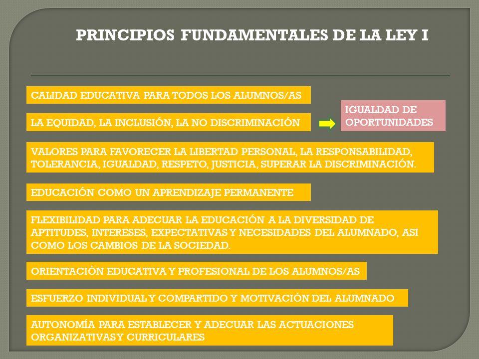PRINCIPIOS FUNDAMENTALES DE LA LEY I