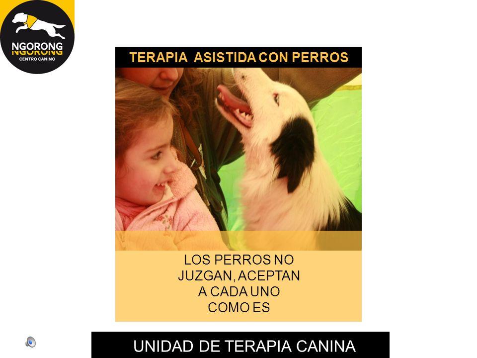 TERAPIA ASISTIDA CON PERROS