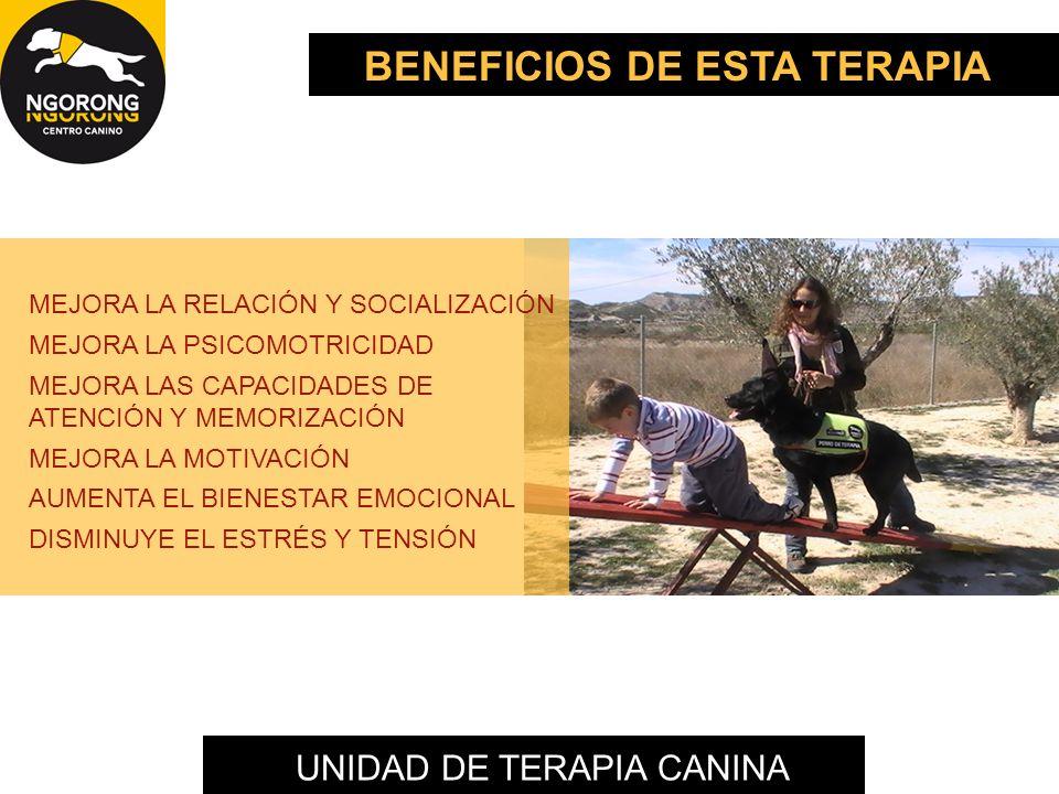 BENEFICIOS DE ESTA TERAPIA