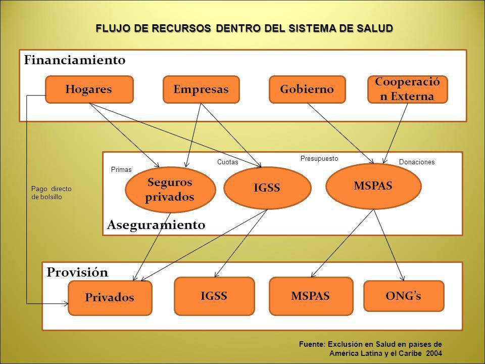 FLUJO DE RECURSOS DENTRO DEL SISTEMA DE SALUD