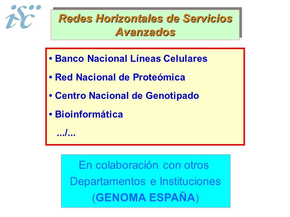 Redes Horizontales de Servicios Avanzados