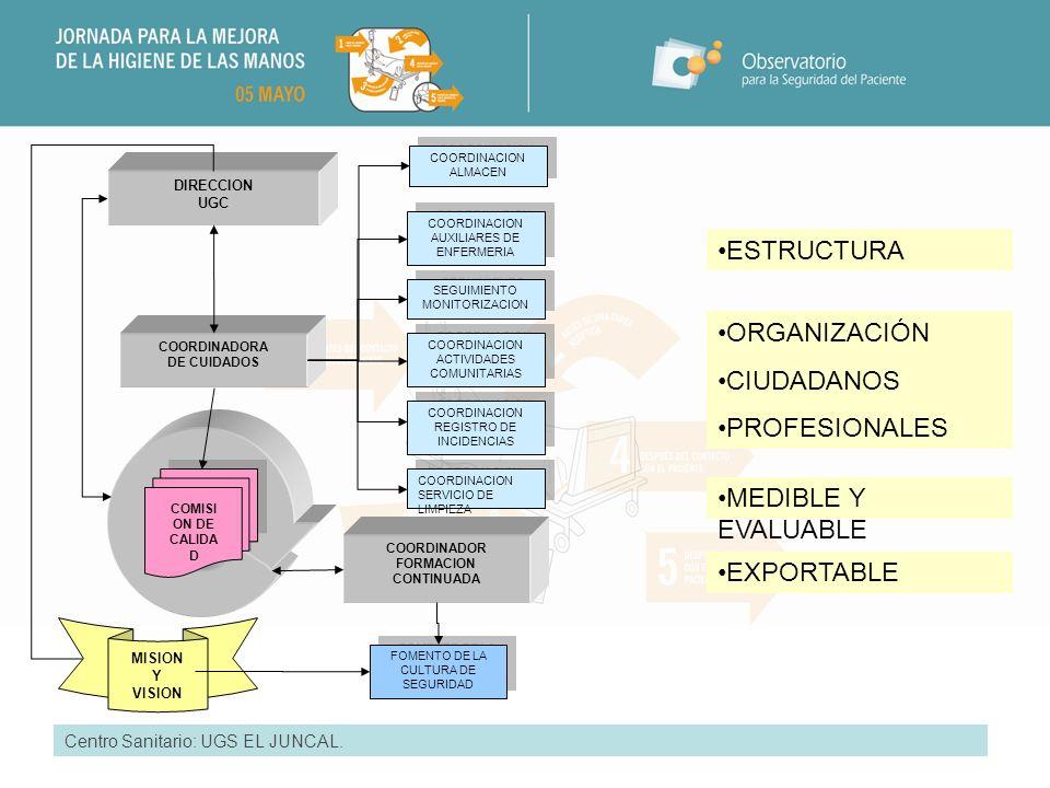 ESTRUCTURA ORGANIZACIÓN CIUDADANOS PROFESIONALES MEDIBLE Y EVALUABLE