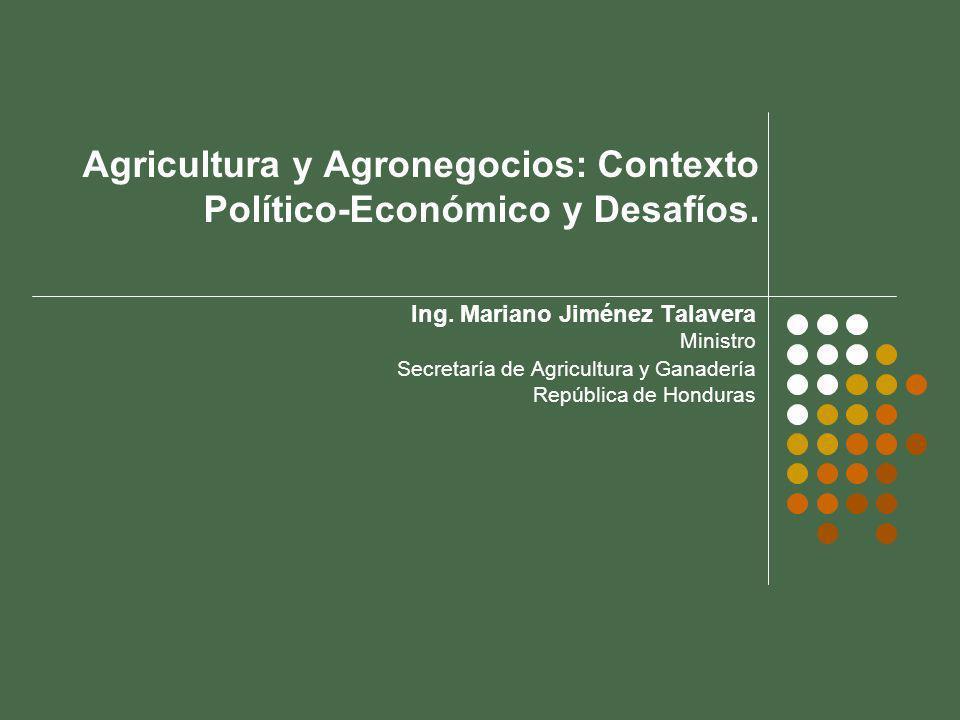 Agricultura y Agronegocios: Contexto Político-Económico y Desafíos.
