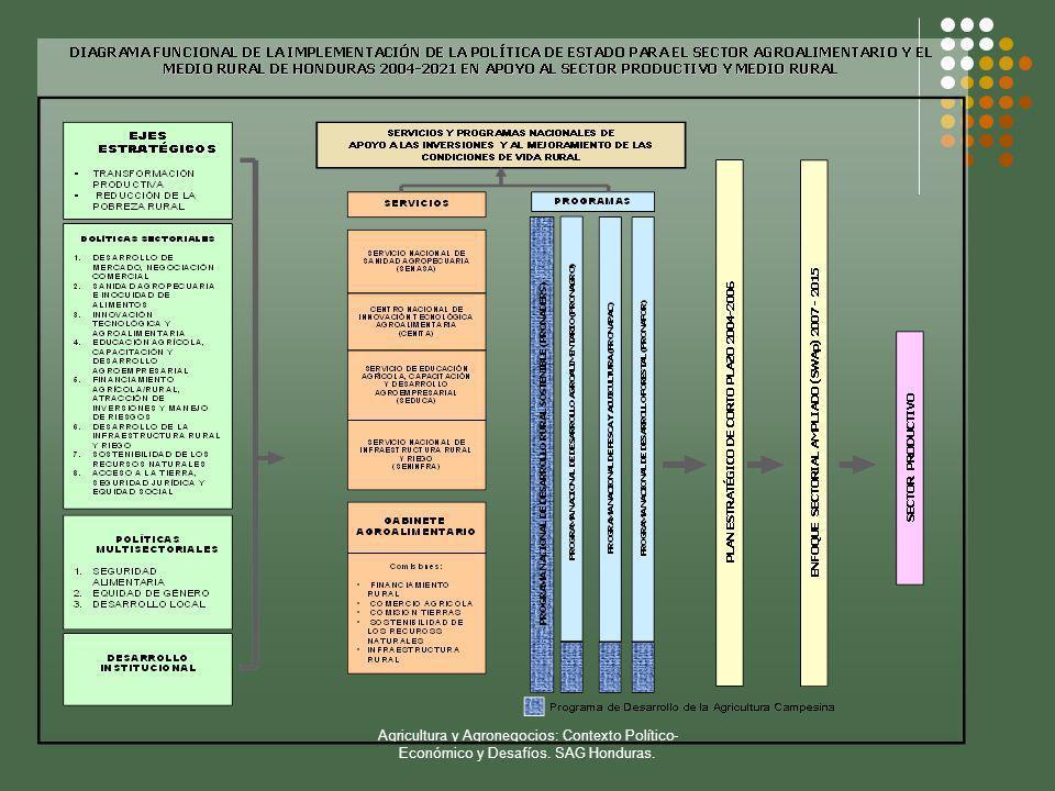 Agricultura y Agronegocios: Contexto Político-Económico y Desafíos