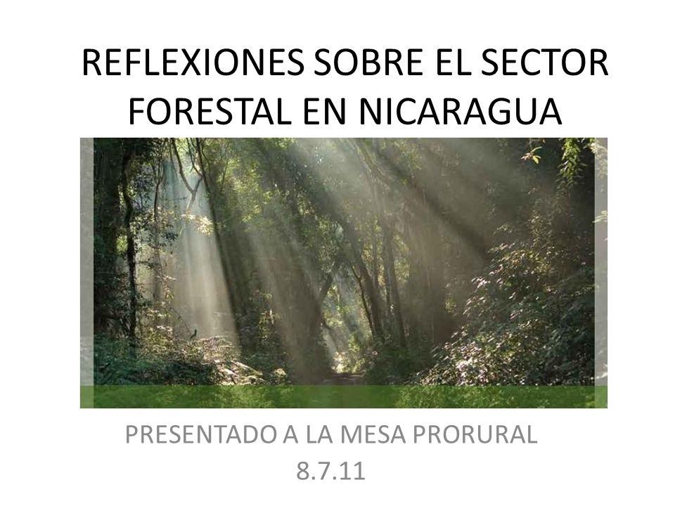 REFLEXIONES SOBRE EL SECTOR FORESTAL EN NICARAGUA