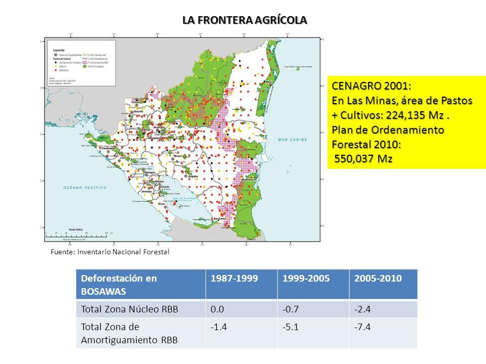En Las Minas, área de Pastos + Cultivos: 224,135 Mz .