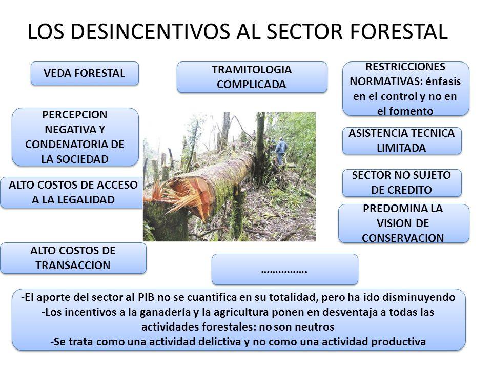 LOS DESINCENTIVOS AL SECTOR FORESTAL
