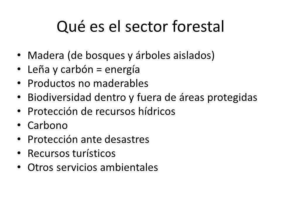 Qué es el sector forestal