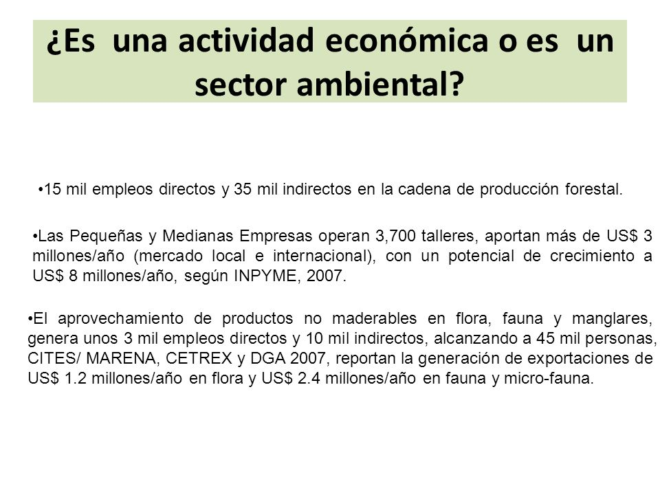 ¿Es una actividad económica o es un sector ambiental