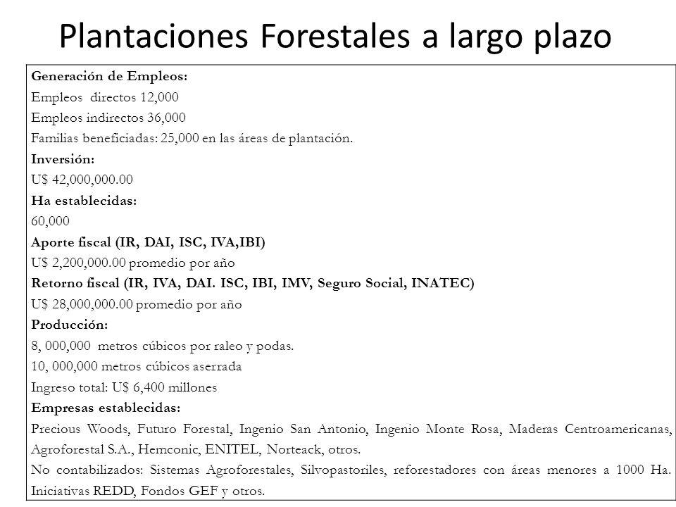 Plantaciones Forestales a largo plazo