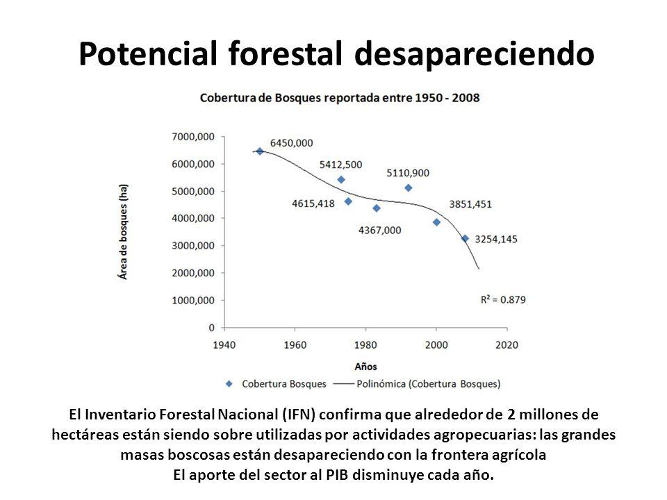 Potencial forestal desapareciendo