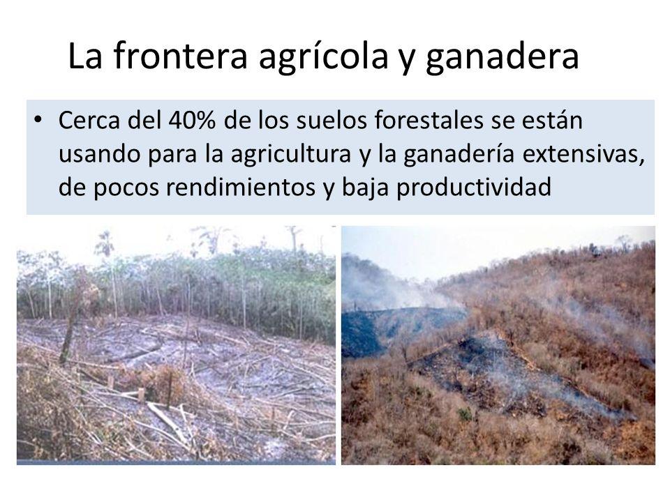La frontera agrícola y ganadera