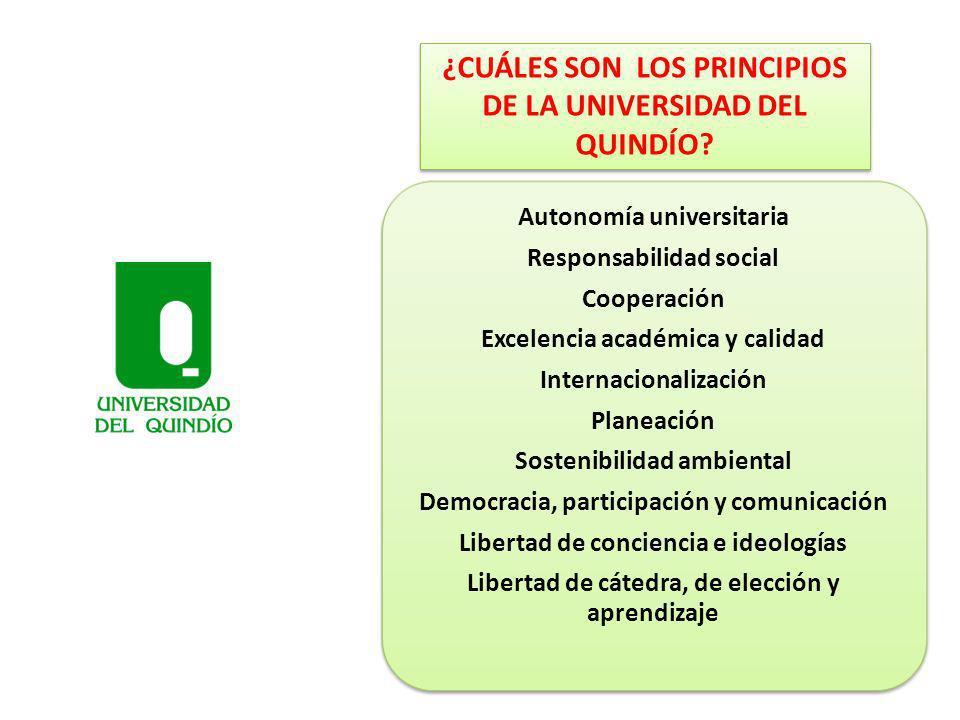 ¿CUÁLES SON LOS PRINCIPIOS DE LA UNIVERSIDAD DEL QUINDÍO