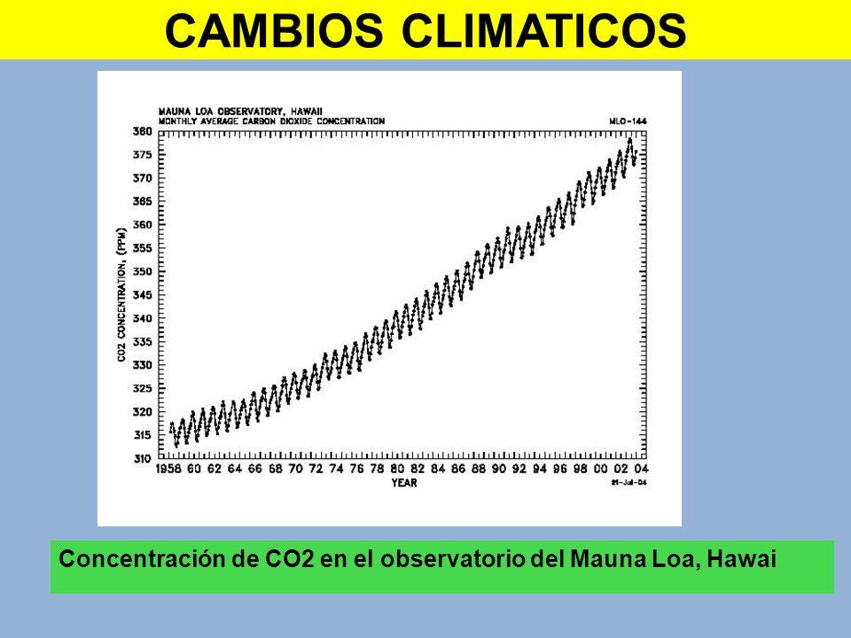 CAMBIOS CLIMATICOS Concentración de CO2 en el observatorio del Mauna Loa, Hawai
