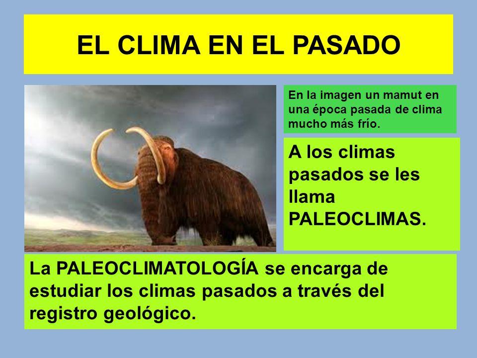 EL CLIMA EN EL PASADO A los climas pasados se les llama PALEOCLIMAS.