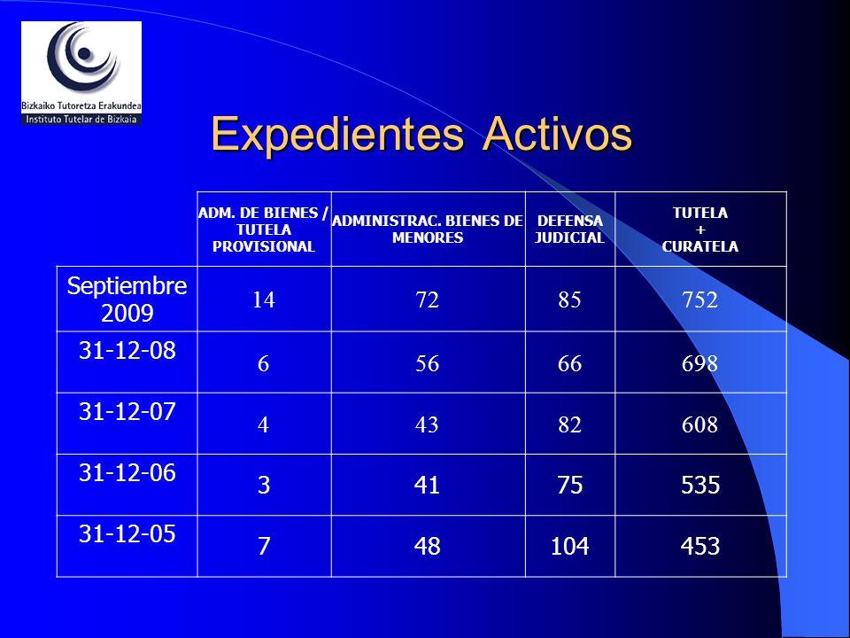ADM. DE BIENES / TUTELA PROVISIONAL ADMINISTRAC. BIENES DE MENORES