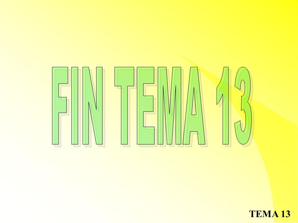 FIN TEMA 13