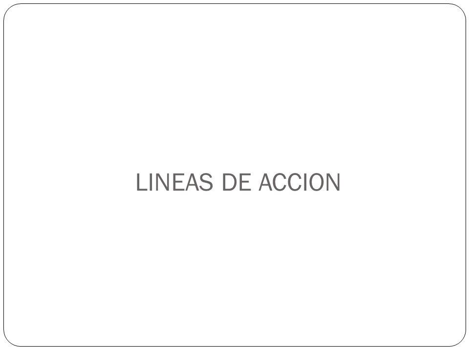 LINEAS DE ACCION