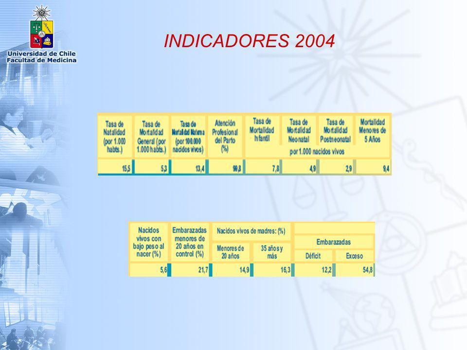 INDICADORES 2004