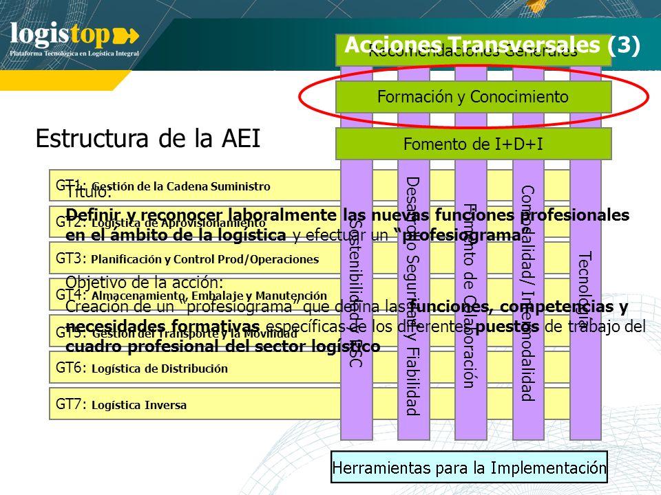Estructura de la AEI Acciones Transversales (3)