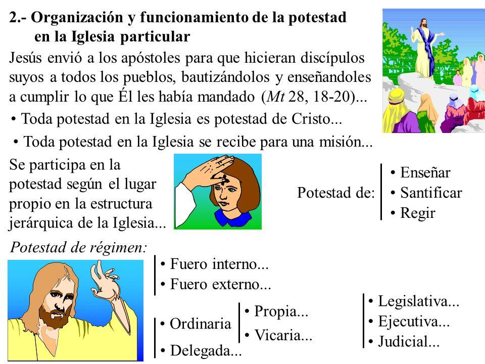 2.- Organización y funcionamiento de la potestad en la Iglesia particular