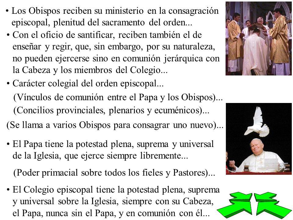 Los Obispos reciben su ministerio en la consagración episcopal, plenitud del sacramento del orden...