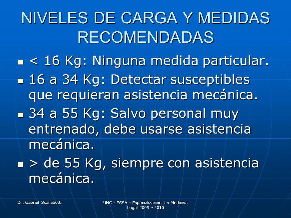 NIVELES DE CARGA Y MEDIDAS RECOMENDADAS