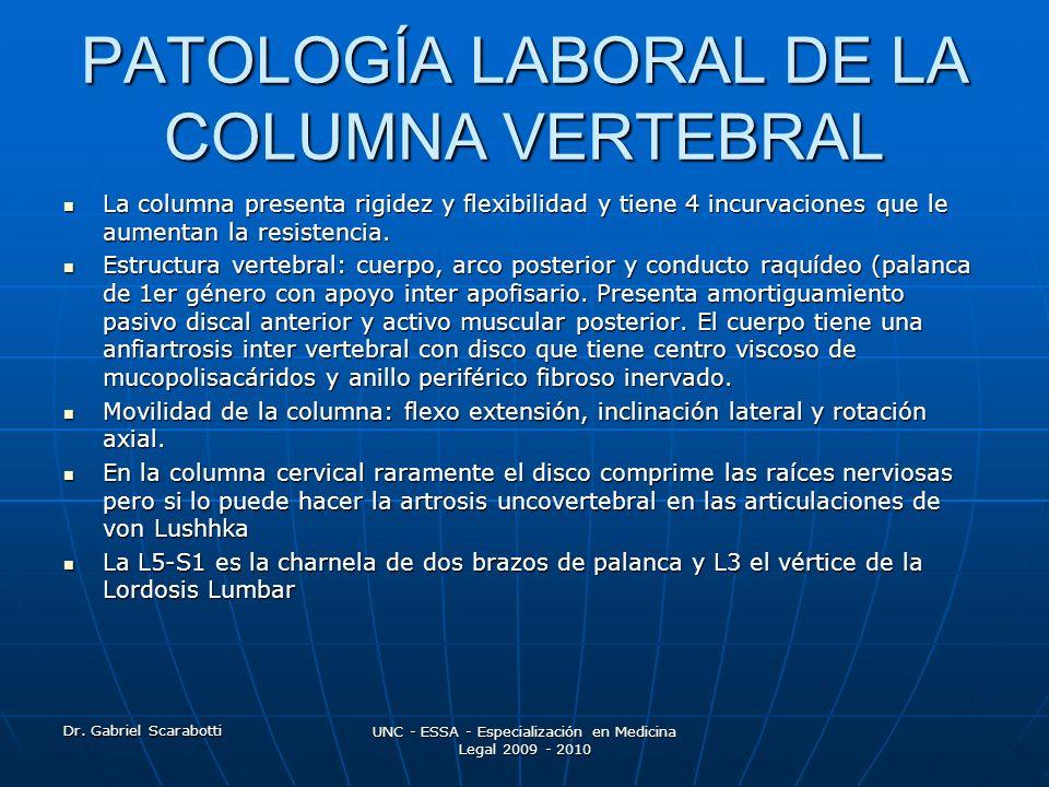 PATOLOGÍA LABORAL DE LA COLUMNA VERTEBRAL