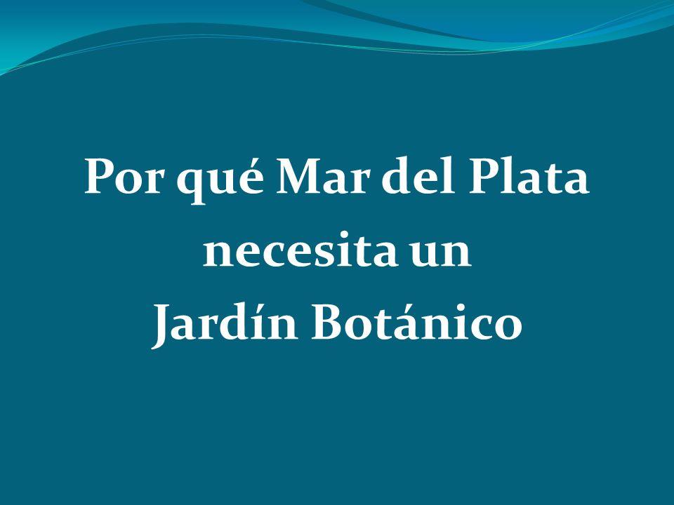 Por qué Mar del Plata necesita un Jardín Botánico