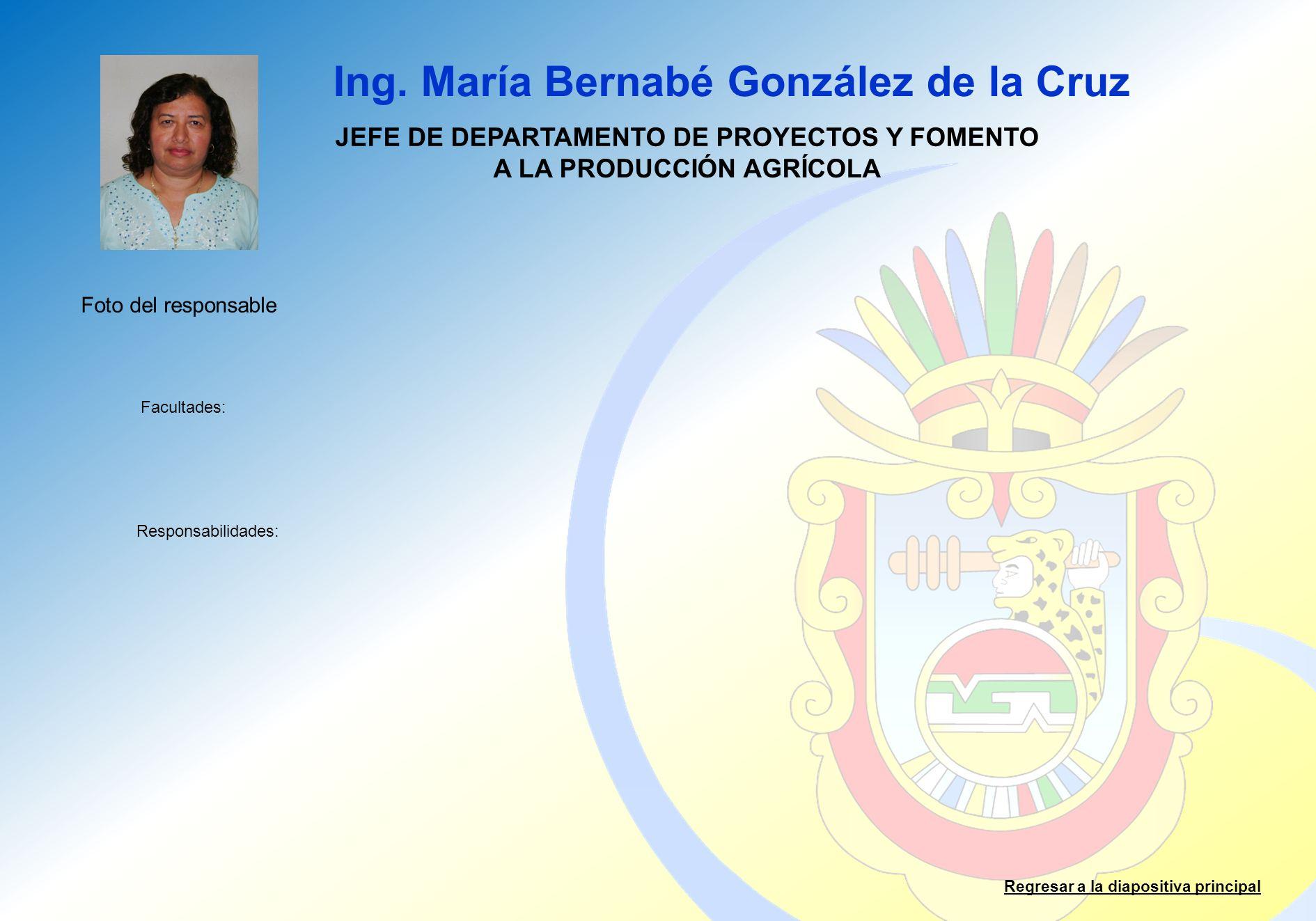 JEFE DE DEPARTAMENTO DE PROYECTOS Y FOMENTO A LA PRODUCCIÓN AGRÍCOLA