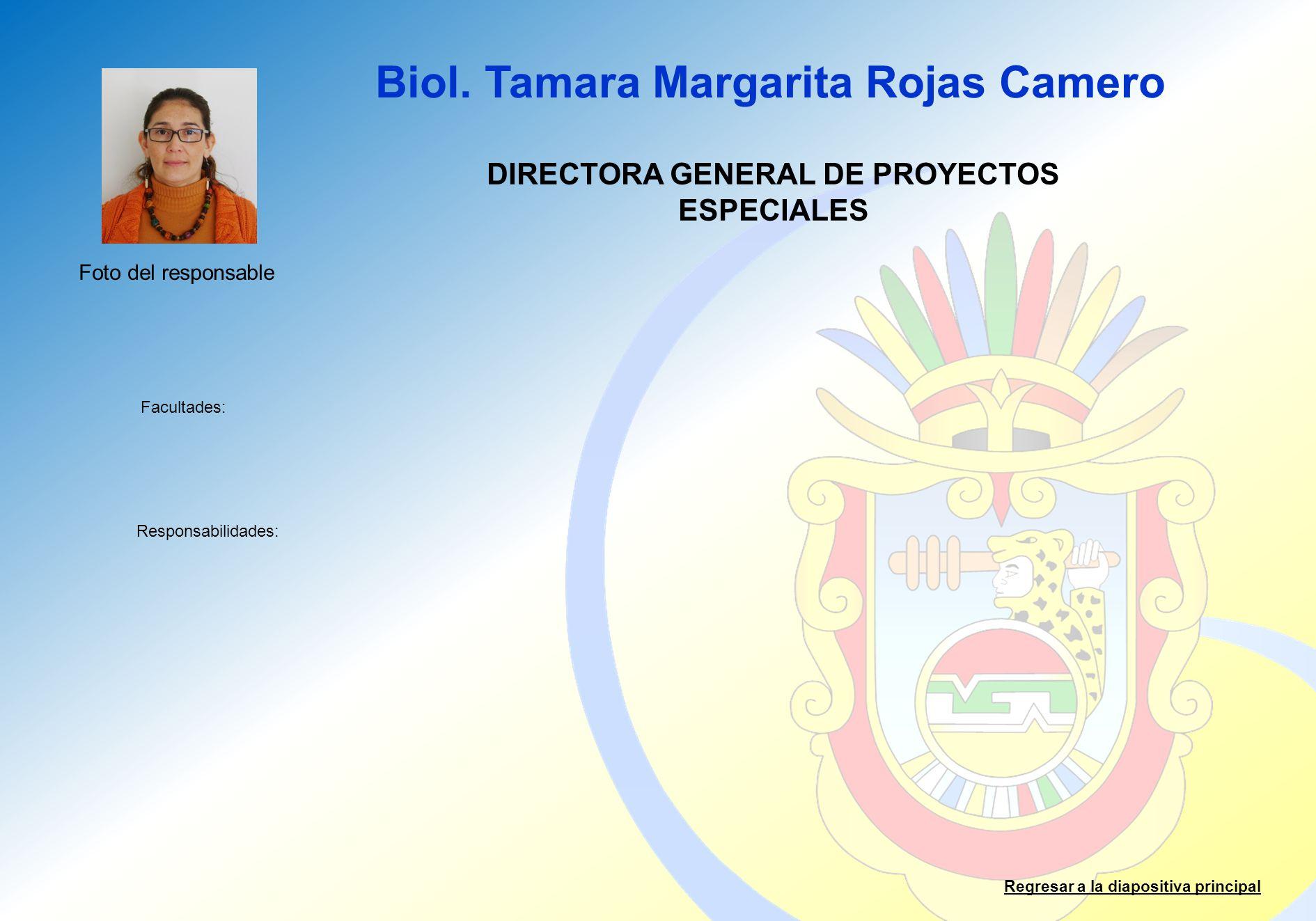 DIRECTORA GENERAL DE PROYECTOS ESPECIALES