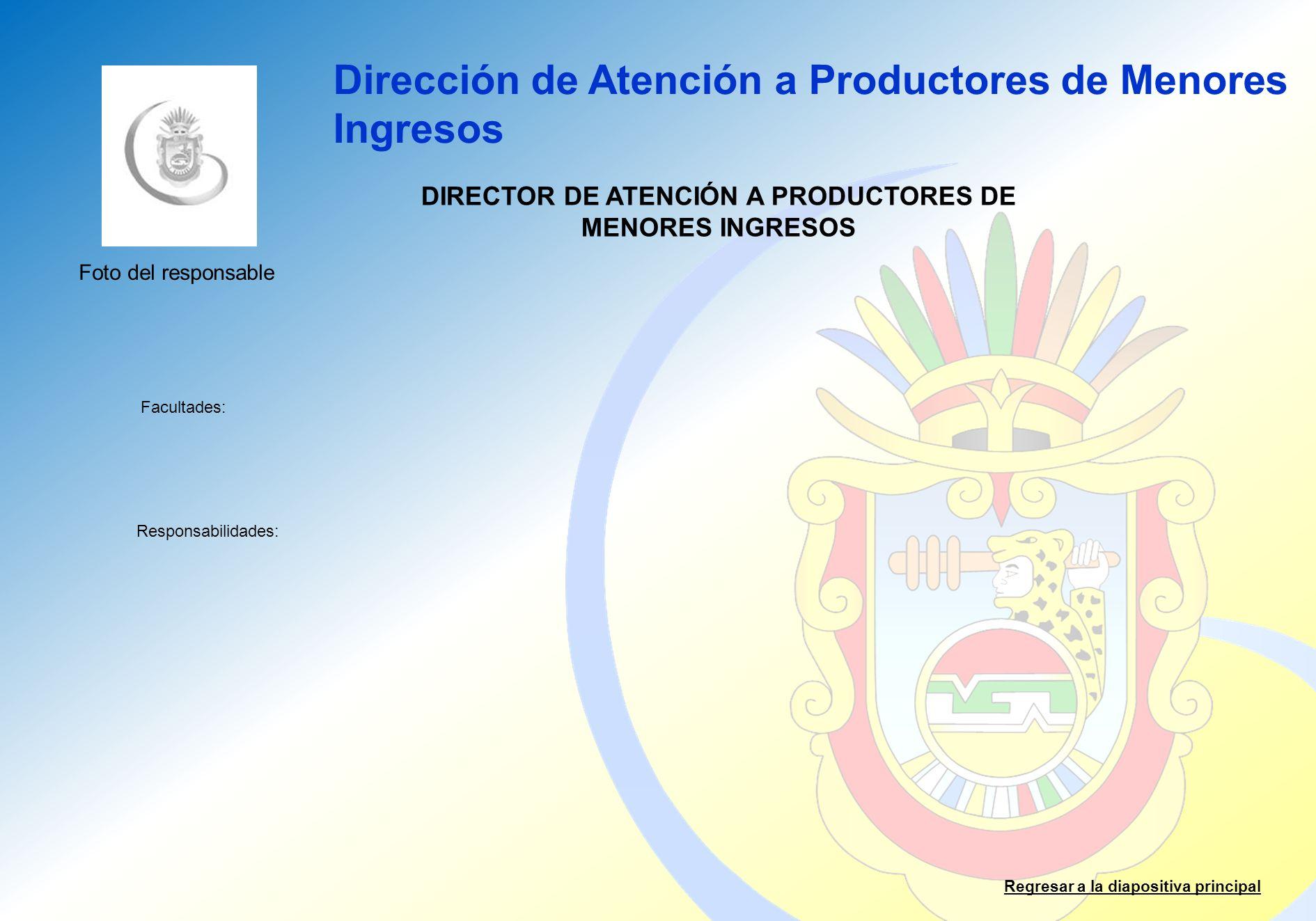 DIRECTOR DE ATENCIÓN A PRODUCTORES DE MENORES INGRESOS