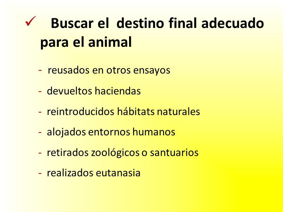 Buscar el destino final adecuado para el animal