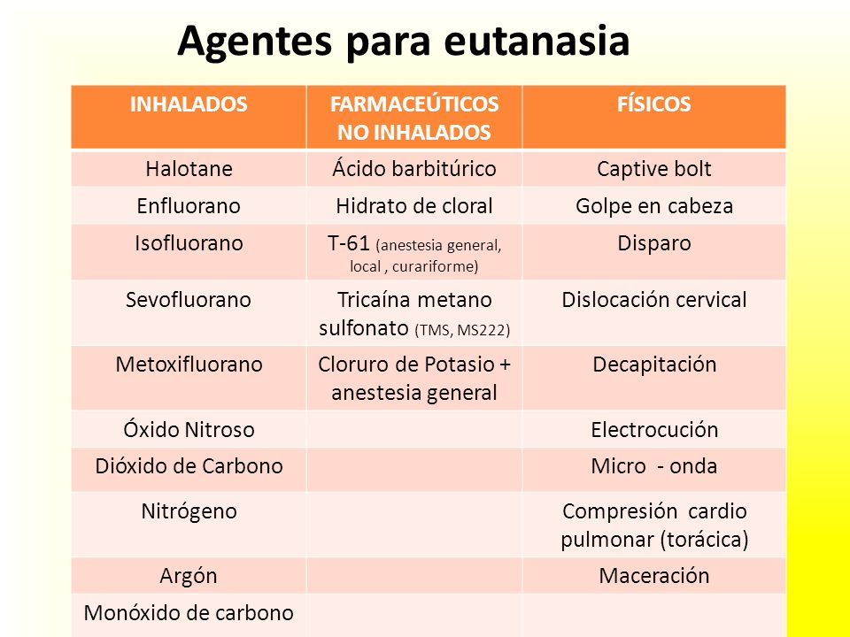 Agentes para eutanasia