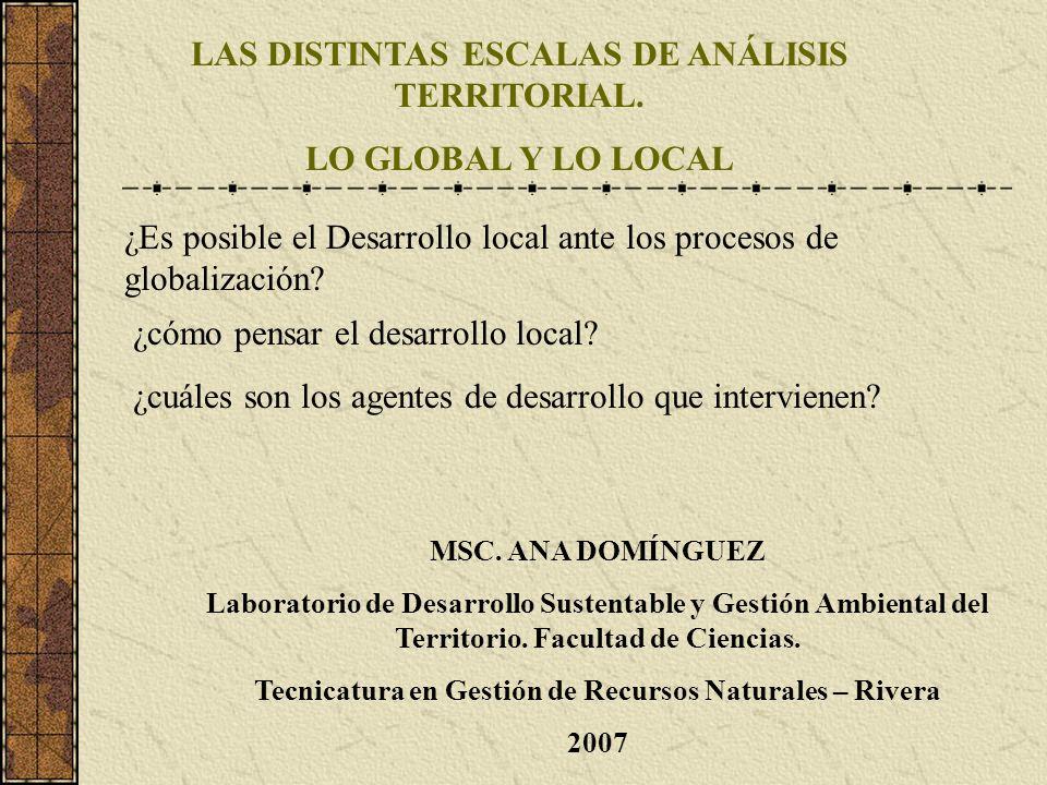 LAS DISTINTAS ESCALAS DE ANÁLISIS TERRITORIAL. LO GLOBAL Y LO LOCAL