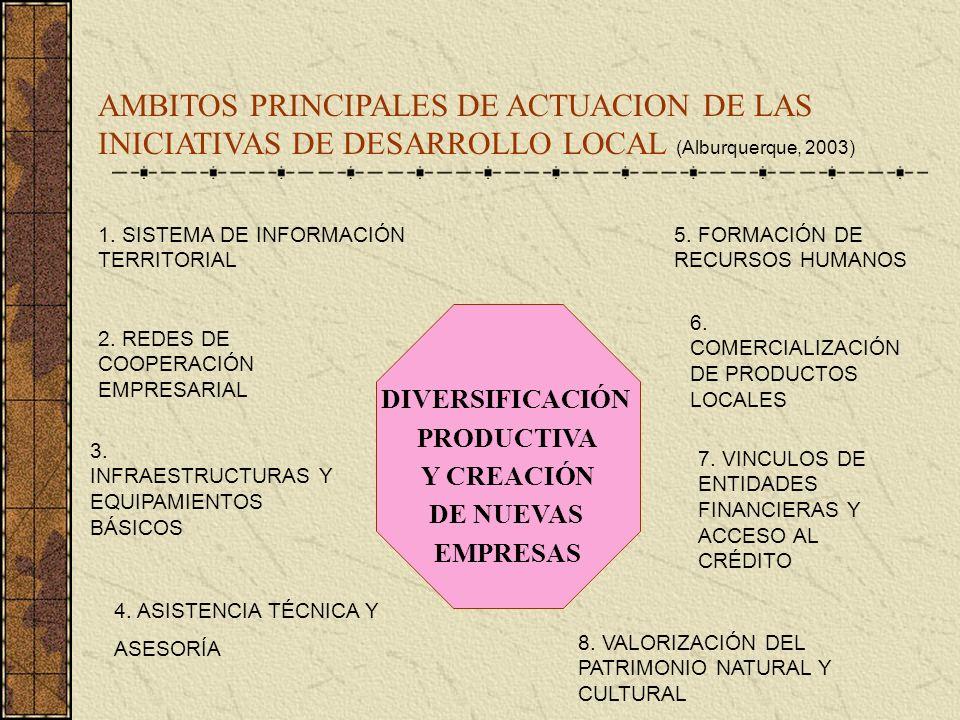 AMBITOS PRINCIPALES DE ACTUACION DE LAS INICIATIVAS DE DESARROLLO LOCAL (Alburquerque, 2003)