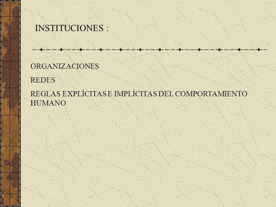 INSTITUCIONES : ORGANIZACIONES REDES