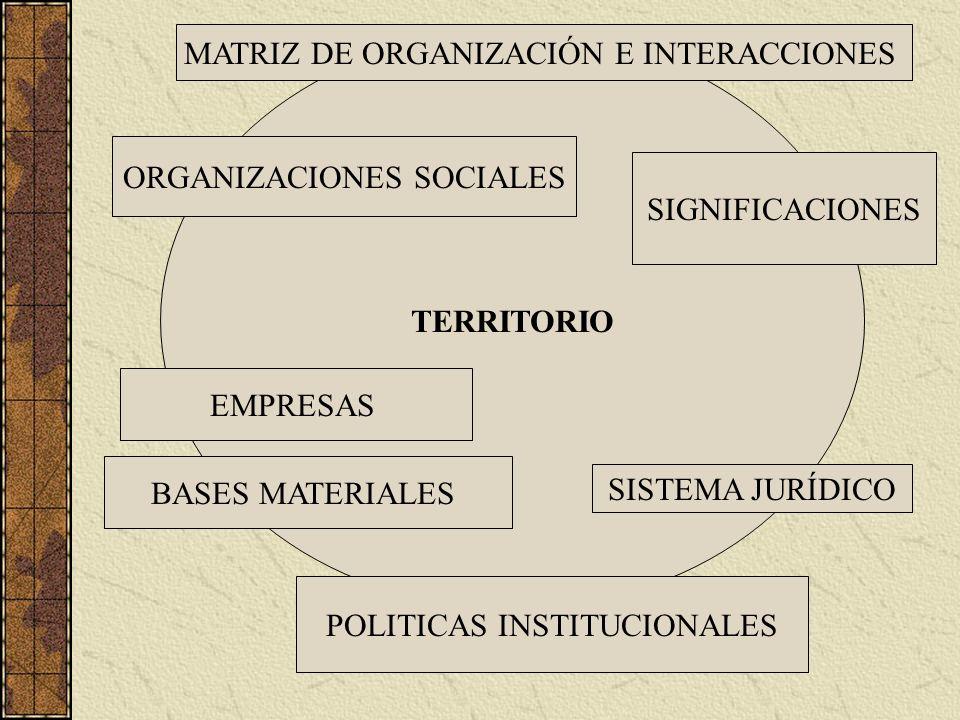 MATRIZ DE ORGANIZACIÓN E INTERACCIONES