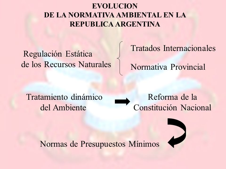 DE LA NORMATIVA AMBIENTAL EN LA REPUBLICA ARGENTINA