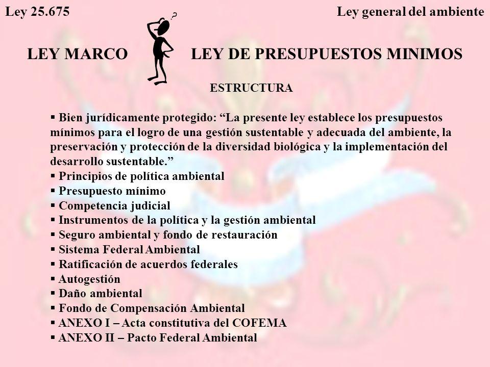 LEY DE PRESUPUESTOS MINIMOS