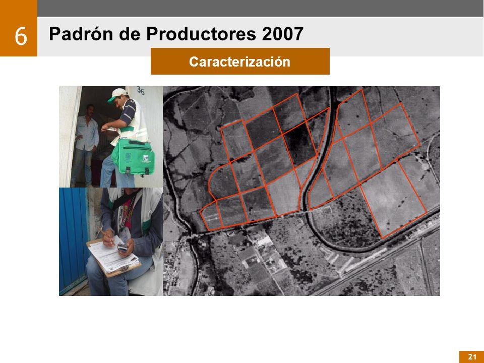 Padrón de Productores 2007 6 Caracterización 21 21 21
