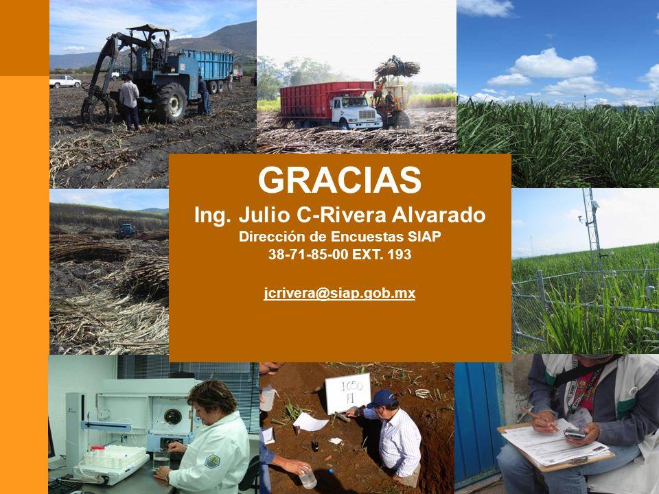 Ing. Julio C-Rivera Alvarado Dirección de Encuestas SIAP