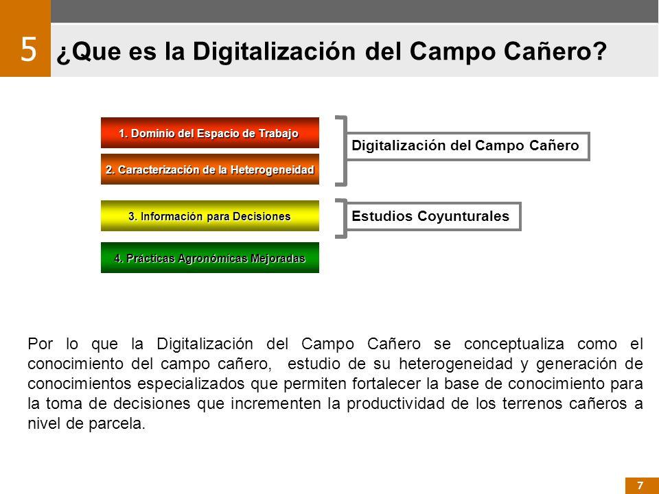 ¿Que es la Digitalización del Campo Cañero