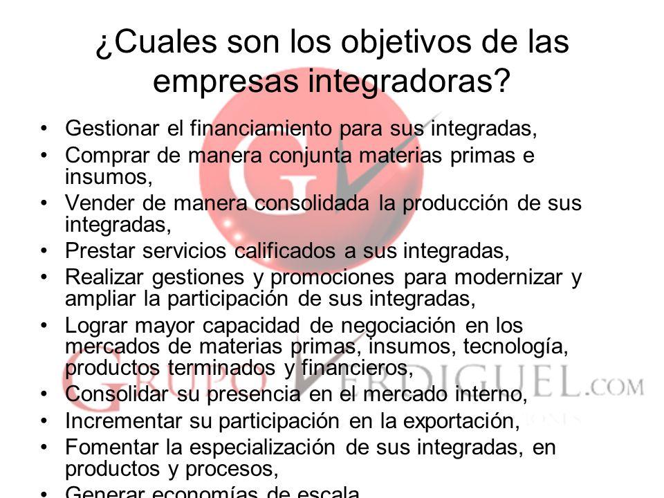 ¿Cuales son los objetivos de las empresas integradoras