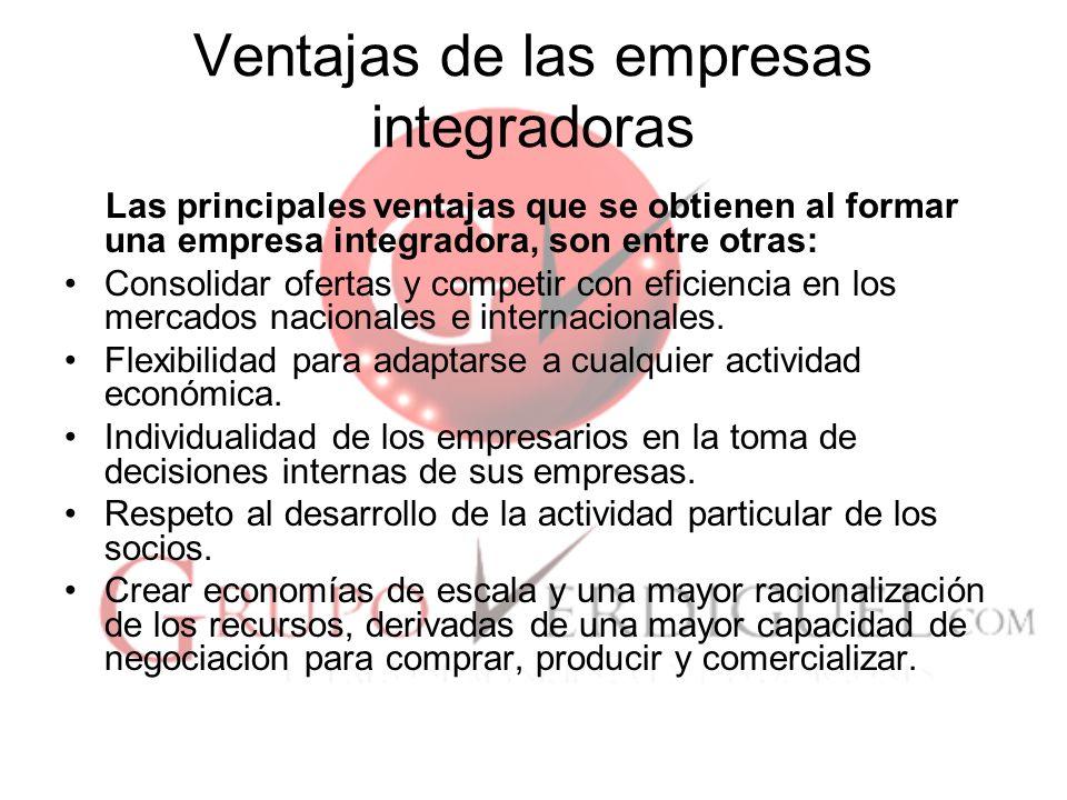 Ventajas de las empresas integradoras