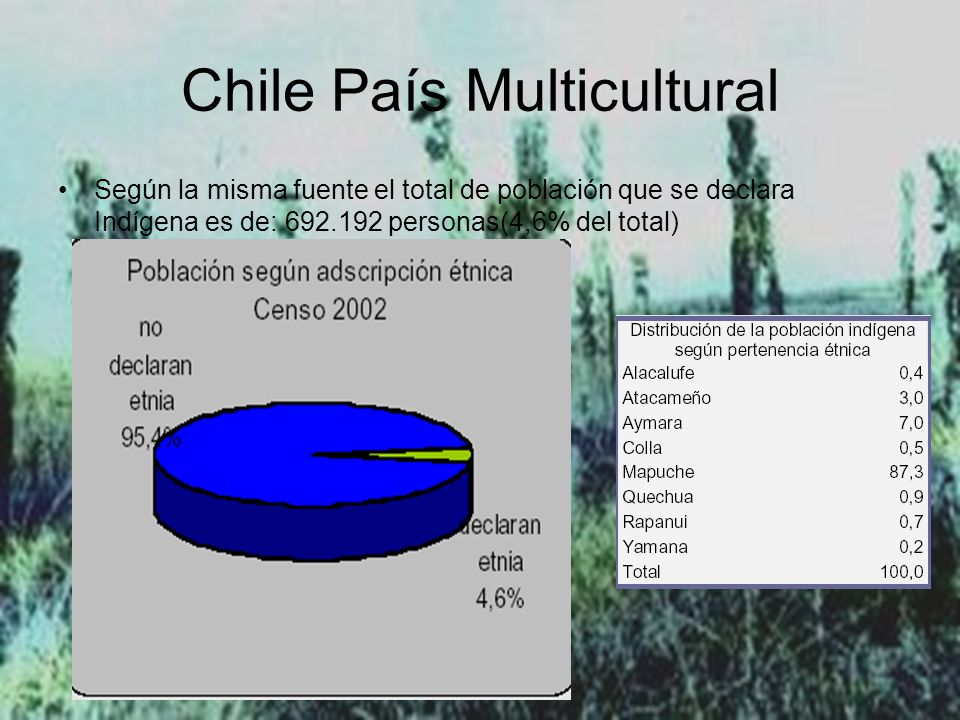Chile País Multicultural