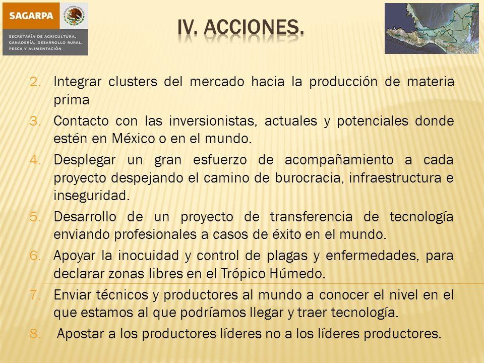 iV. Acciones. Integrar clusters del mercado hacia la producción de materia prima.